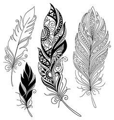 Peerless decorative feather vector on VectorStock&reg