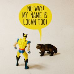 justinrampage:  The odds are slim to none, but Aled Lewis managed to find two Wolverines with the exact same name! Follow this guy and his clever work here on Tumblr. Related Rampages: Toy Stories 1 | Philosoraptor | Slow-Coach (More) Wolverine Meets Wolverine by Aled Lewis (Tumblr) (Flickr) (Twitter) Via: aledlewis