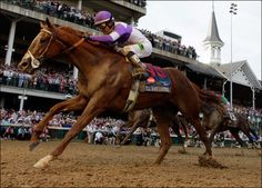 I'll Have Another, winner of the Kentucky Derby and Preakness 2012