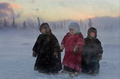Travel unknown land with the Nenets people, Russia