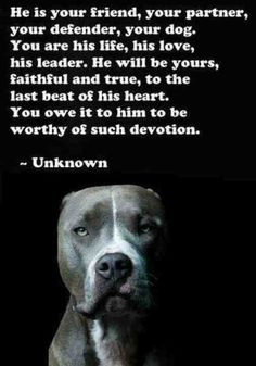 If only every dog owner thought this way.