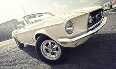 An poster sized print, approx mm) (other products available) - Ford Mustang, Cabriolet, Convertible classic car at Berlin. - Image supplied by Fine Art Storehouse - poster sized print mm) made in the UK Ford Mustang 1968, Ford Mustangs, Ford Mustang Cabriolet, Ford Mustang Convertible, Mustang Boss, Mick Fleetwood, Photo Mug, Best Classic Cars, Ford Thunderbird