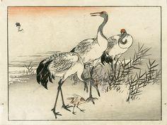 Bairei Kono Bird Prints 1882
