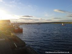 Amble Harbour in the evening sunlight