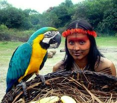 Indigenous Of Brazil With Arara.