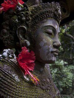 Zen Buddha statue with flower in ears. Bali.