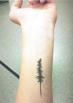 Pine tree tattoo. So close to what I want! Maybe even same spot. Maybe a bit more rustic or disheveled. Most likely back of my arm above elbow though. by proteamundi