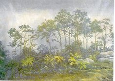 Helechos - Gonzalo Ariza Painting, Ferns, Photos, Colombia, Scenery, Artists, Art, Painting Art, Paintings