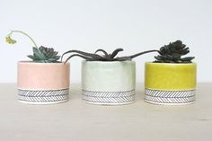 Pinched Porcelain Cup Planter  with Herringbone  Made por ebenotti, $34.00