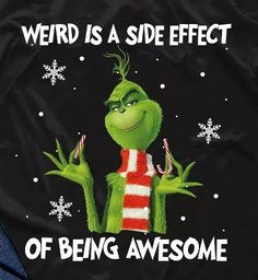 Be comfortable in your own skin. Grinch Christmas Decorations, Grinch Christmas Party, Grinch Party, Holiday, Christmas Quotes, Christmas Pictures, Christmas Stuff, Xmas, Cute Quotes