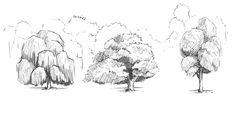 Rysowanie drzewa - detal.