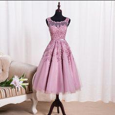 Short Evening Dress,Appliques Lace Evening Dresses,Tulle Prom Dress,Elegant