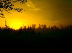 Naturbild med soluppgång en tidig morgon