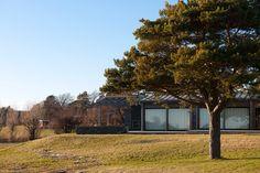 BJoeNNESSKOGEN- cabin Cabins, Plants, Summer, Home, Modern, Summer Time, Plant, Cottages, Cabin