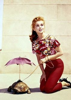 Ann-Margaret walking a turtle with an umbrella, 1960s