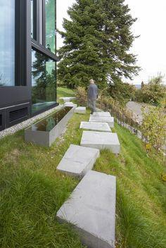 vineyard-home-steep-slope-subterranean-level-