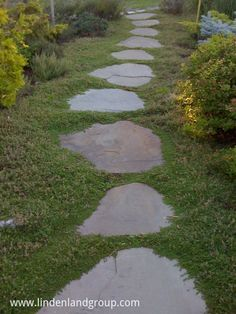 Bluestone flagging stepping stone path with Thymus minus interplanted.