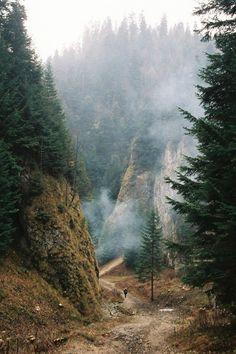 Aristocrator [travel | landscape | nature | seascape | cityscape | mountains | wild | architecture]