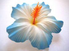 Hawaiian Hawaii Bridal Wedding Party Life Like Hibiscus Flower Hair Clip Blue Hibiscus Flowers Hibiscus Hibiscus Flower Tattoos