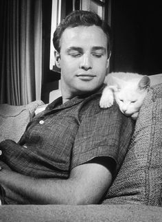 Explore the best Marlon Brando quotes here at OpenQuotes. Quotations, aphorisms and citations by Marlon Brando Fred Astaire, Celebrities With Cats, Celebs, Don Corleone, Men With Cats, Happy Images, Louis Armstrong, Actrices Hollywood, Cat People
