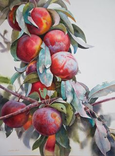 [New] The 10 Best Art Ideas Today (with Pictures) - to see more . Painting & Drawing, Watercolor Paintings, Watercolours, Art For Sale Online, Botanical Art, Flower Art, Art Flowers, Impressionism, Original Artwork