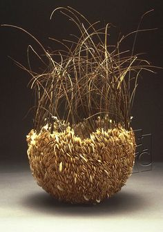 Untitled Seed Series, Carrie Nordlund  State Museum of Pennsylvania  http://contemporarybasketry.blogspot.co.uk/2012/09/gathered-materialsnatural.html# 1.2.13