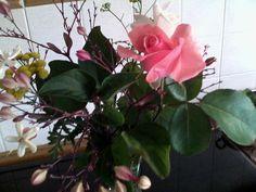 Fiori dal mio giardino.