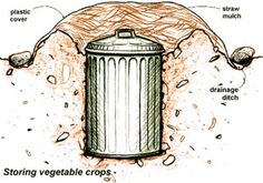 This diagram give a perfect demonstration for how you can use a garbage can to store produce underground. Note that you can substitute a tra...