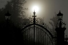 Gate to Afterworld - by Roland Maria Reininger something to write about Midnight Garden, Dark Moon, Dark Places, Dark Night, Life Is Beautiful, Beautiful Things, White Photography, Dark Side, Moonlight