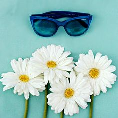 Say it with Daisies |Flora Collection| #NowinVogue @ http://vogu.ee/PUKIvQ