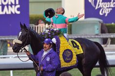 Zenyatta and Mike Smith after their win at the 2009 Breeder's Cup- the first mare ever to win.