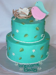 Baby shower Cake - rather its be pink with the birdies or even change then to owls . Considering they're my newest obsession
