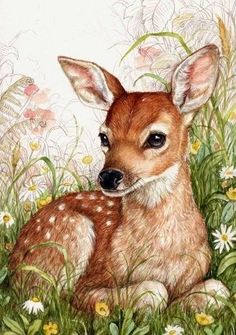 Jewerly Illustration Design Beautiful New Ideas Animal Paintings, Animal Drawings, Art Drawings, Art And Illustration, Deer Art, Beautiful Drawings, Wildlife Art, Painting & Drawing, Deer Drawing