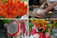Hawaii, Oahu, Honolulu, farmer's market