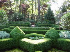 Formal Gardens on Pinterest Boxwood Garden Hedges and