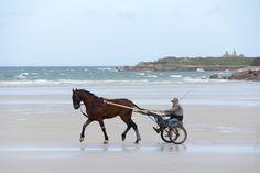 Santec (Finistère - 29) et ses 17 km de côtes dont 14 km de plages présente un panorama où alternent des roches granitiques et des plages de sable fin et blanc. Les nombreuses criques abritées offrent un refuge aux nombreux bateaux de plaisance mais aussi aux amoureux du farniente et du bronzage.  Au Dossen, les passionnés de sport peuvent s'adonner au surf, à la planche à voile, au kite-surf mais également au char à voile et à la promenade à cheval. - photo réalisée par Paul Kerrien