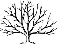 Bare Tree Coloring Page Worksheets Craft and Stenciling