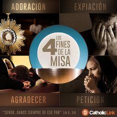 Biblioteca de Catholic-Link - Infografía: Los 4 fines de la Santa Misa