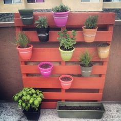 This vertical garden is made from an upcycled wooden pallet, some recycled pots, and metal wire and cost $30.