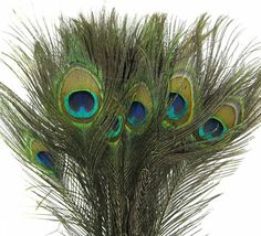 Peacock Feathers 50 Real Natural Peacock Feathers With Eye For Wedding,Home Decor,Craft,Mardi Gras Mask,Trimming-Peacock Feathers In Bulk on Etsy, $24.95