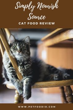 Healthy Cat Food, Dry Cat Food, Deboned Turkey, Sources Of Soluble Fiber, Dried Potatoes, Dessert Cookbooks, Fish And Chicken
