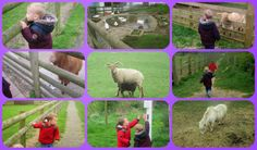 Two Monsters and Me: Gorse Hill City Farm - an adventure