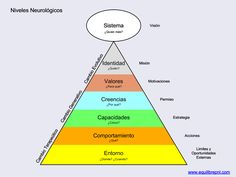 Los Niveles Neurológicos de la PNL