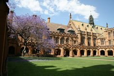 Are you headed to the University of Sydney to study physiotherapy for the 2015 intake? University of Sydney. University Programs, First University, University Of Sydney, Top 100 Universities, English Language Course, Student Studying, Medical School, Sydney Australia, Backpacker