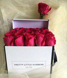 G R A C E  K E L L Y  #hotpink | #sydney | #sydneyflorist | #love | #pretty | #prettylittleflowers | #prettylittleflowersau | #monday | #girl | #woman | #weddedwonderland | #australia | #gentleman | #tulle | #rose | #luxury | #myluxlist | #fashion | #bridesmaid | #bride | #justbecause | #justengaged | #boy | #girly | #pink | #simple | #gracekelly