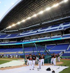 Miami Marlins MLB Baseball