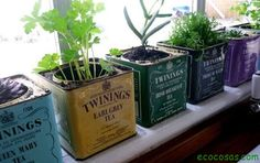 Reciclando nuestro jardín | Ecocosas