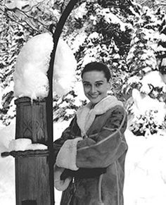 Audrey Hepburn~Christmas in St. Moritz, Photo by Mel Ferrer. Audrey Hepburn Children, Audrey Hepburn Movies, Audrey Hepburn Born, Golden Age Of Hollywood, Classic Hollywood, In Hollywood, Beautiful Lips, Naturally Beautiful, Beautiful People