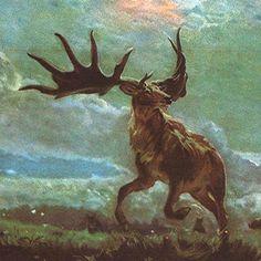 ShukerNature: THE LAST OF THE IRISH ELKS? - INVESTIGATING SOME MEGALOCEROS MYSTERIES