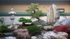 mini jardin japonais spectaculaire
